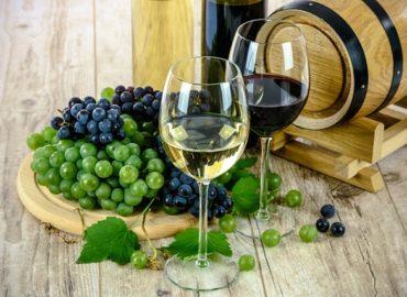 Weinprobe im Schloss Beilstein