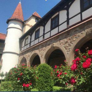 Blühende Rosen vor Schloss Beilstein